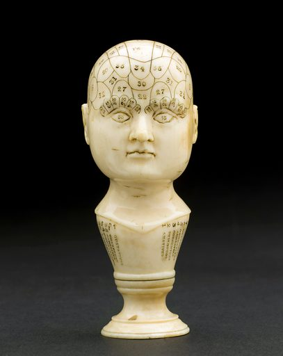 Miniature ivory phrenological head, Europe, 1850–1914. The skull of this ivory phrenological head has been marked off into sections and used for phrenological consultations. Phrenologists believed that the shape and size of various areas of the brain (and therefore the overlying skull) determined personality. Phrenological heads were used as reference guides for people carrying out consultations. Although phrenology became popular with large numbers of people in the 1800s, it soon became controversial within medical circles and was eventually dismissed as quackery. Contributors: Science Museum, London. Work ID: qcuhygxd.
