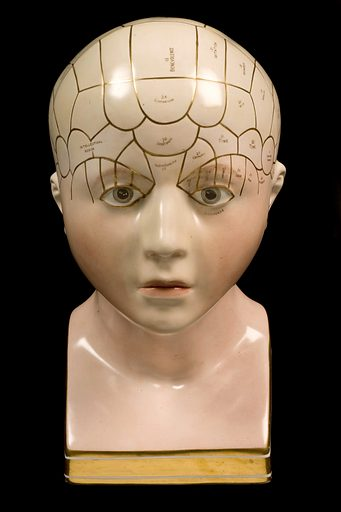 Porcelain phrenological bust, tinted skin colour, divisions labels and numbers marked in gilt, possible Derby. Full frontal view. Black background. Contributors: Science Museum, London. Work ID: jzrps723.