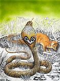 Nature's Kingdom: King Cobra Meets His Match