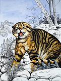 Nature's Kingdom: Hunter of the Highlands –  the Wildcat