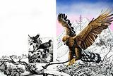 Nature's Kingdom – The Eagle