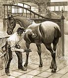 Gunner lad cleaning a horse