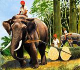 Elephants at work