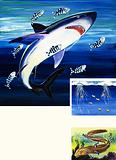Shark, Moray Eel and Portuguese Man-of-War