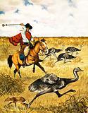 Emu Hunting