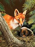 Fox and fox cub