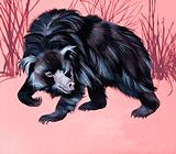 Unidentified furry animal