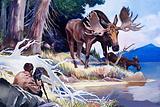 Wonders of Nature: Mr Moose Seeks Protection