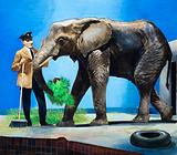 Who's Who in the Zoo: Two-Ton Toto