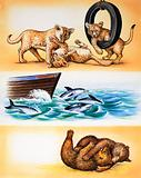 All Sorts of Animal Games