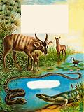 Sitatunga, Jacana Bird, Monitor Lizard and Python