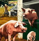 Clean as a Pig