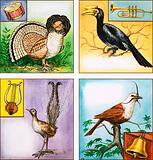 Musical Instrument Birds