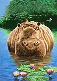 Nature Wonderland: A Happy Hippo