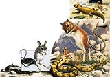 Unidentified animals montage with jerboa, snake and scorpion