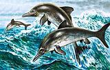 Prehistoric porpoises