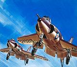 Into the Blue: Birdstrike! Two Schimitar Interceptors taking off
