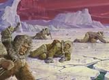 Robert Peary's expedition to the North Pole encountered many dangers