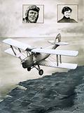 The De Havilland Moth
