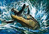 Alligator eating fish