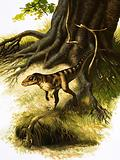 Onithosuchus