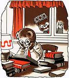 Teddy doing his homework