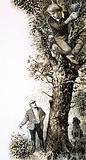 Boy climbing tree in search of birds' eggs