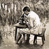 A United Nations scientist working in an experimental rice paddy in India