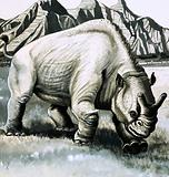 Brontotherium from the Oligocene age