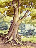 A tree full of wildlife