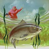 Cardinal Wolsey's carp