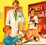 Clinic of the People's Dispensary for Sick Animals