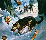 Rescue in the Snow
