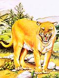 Sabre-toothed tiger