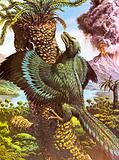 Archaeopteryx, bird-like dinosaur