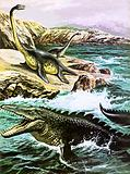 Plesiosaurus (top) and Tylosaurus (bottom)