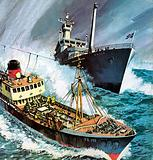 The Cod War