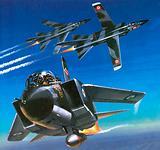 Multi Role Combat Aircraft or MRCA