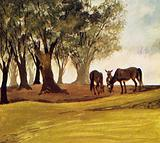 When Don Quixote rested, a herd of Galician mares were grazing nearby