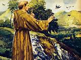 There are many stories of how Francis preached to birds and animals