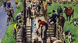 A sheep dip, England, 1960s