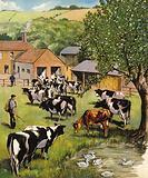 Dairy farm, England, 1960s