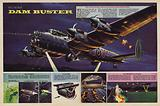 The Dam Buster