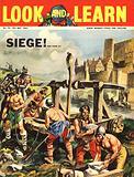 Siege! The Trebuchet