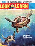 The Flight of the Green Turtle