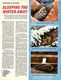 Wonders of Nature: Sleeping the Winter Away. Hibernation