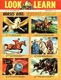 Picture Quiz: Horses
