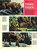 Wonders of Nature: Tiger, Tiger…