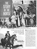 The Story of the Horse