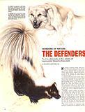 Wonders of Nature: The Defenders